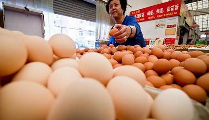 鸡蛋价格稳中有涨