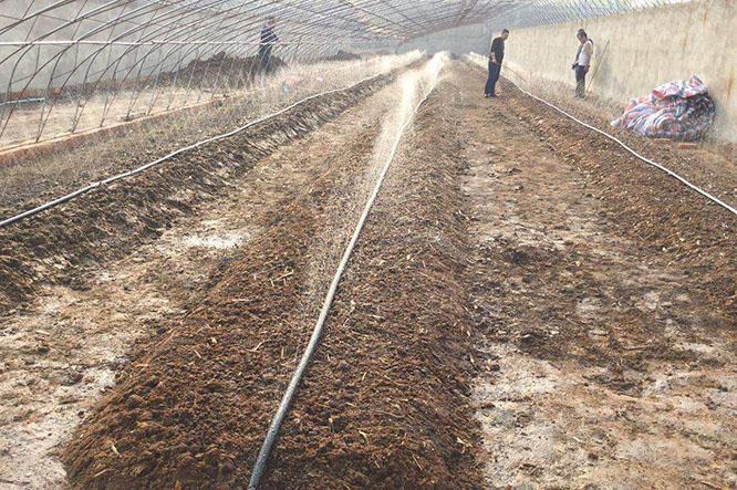 增润蚯蚓养殖温度