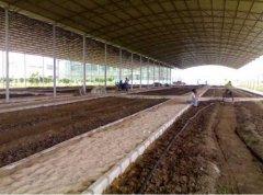 人工养殖蚯蚓的高产饲养技术
